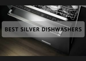 Which are the Best Silver Dishwashers in 2017?